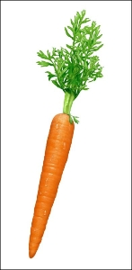 هویج !